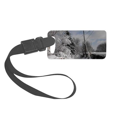 Eyeglass Case Small Luggage Tag
