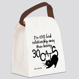 30 cats cat lady tote Canvas Lunch Bag