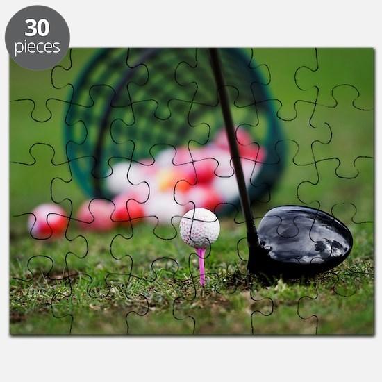 119546245 Puzzle