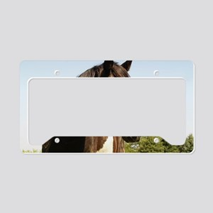 Arabian Proverb License Plate Holder