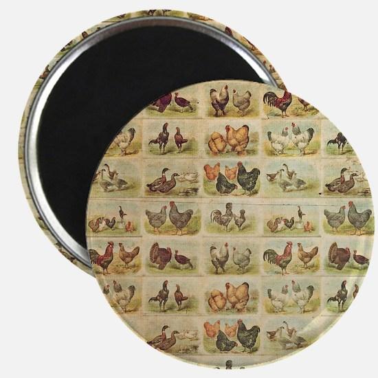 Vintage Barnyard Birds Magnet