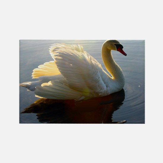 swan shirt Rectangle Magnet