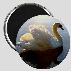 swan shirt Magnet