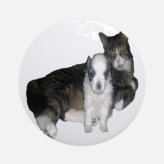 Mal-Shi puppy and her cat friend Round Ornament