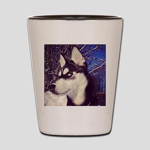 Siberian Husky Puppy Shot Glass