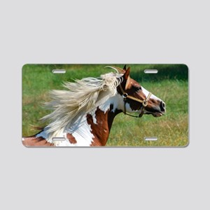 My Paint Horse Profile Aluminum License Plate