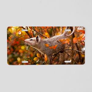 Autumn Opossum Aluminum License Plate