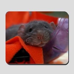 Charlie Mousepad