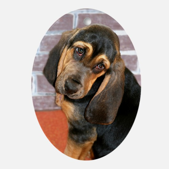 Bassett Puppy Greeting Card Oval Ornament