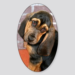 Bassett Puppy Greeting Card Sticker (Oval)