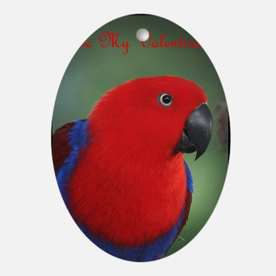 Eclectus Parrot Valentine Oval Ornament