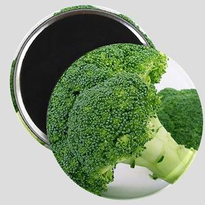 F & V - Broccoli  Design Magnet
