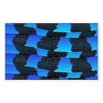 Blue Sea Snake Pattern S Sticker