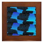 Blue Sea Snake Pattern S Framed Tile