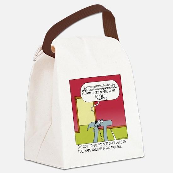 pi Canvas Lunch Bag