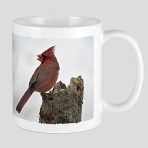 Male red Cardinal Mug