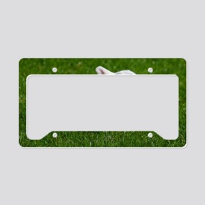 Baby lamb License Plate Holder