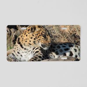 Amur Leopard Aluminum License Plate