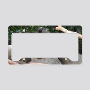 Anger Management License Plate Holder