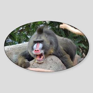 Anger Management Sticker (Oval)