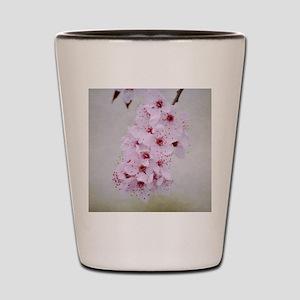 cherry blossom flowers Shot Glass