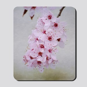 cherry blossom flowers Mousepad