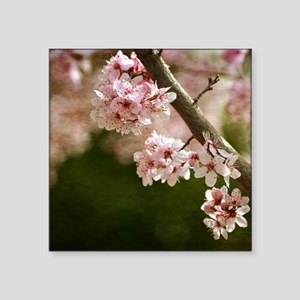 """cherry blossom flowers Square Sticker 3"""" x 3"""""""