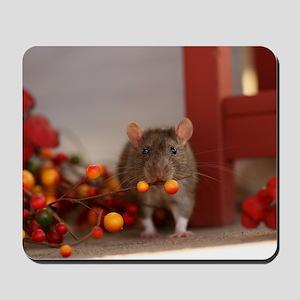 Tango Mousepad