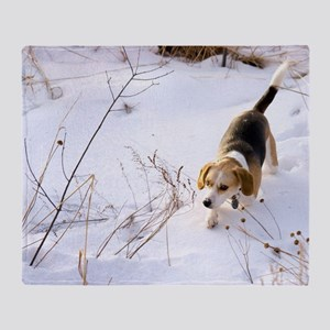 Beagle Hunting A Rabbit In The Snow Throw Blanket