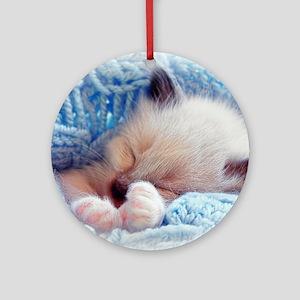 Sleeping Siamese Kitten Paws Round Ornament