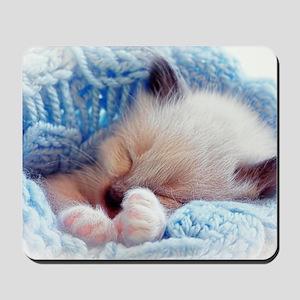 Sleeping Siamese Kitten Paws Mousepad