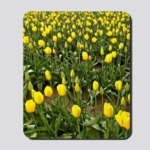 Yellow Field of Tulips Mousepad