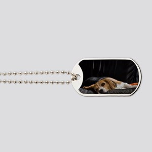 Lazy Beagle Dog Tags