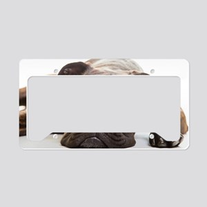 Boxer dog in studio License Plate Holder