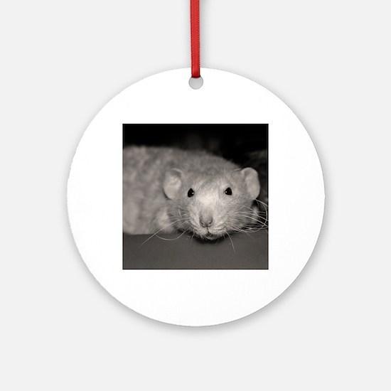 Cheerio Round Ornament