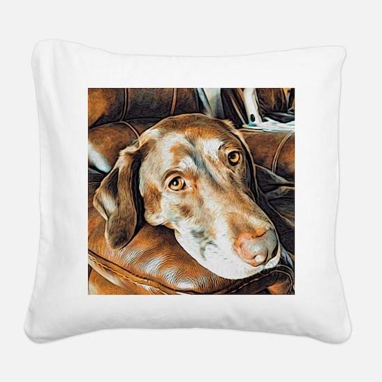 Chocolate Lab, Head on Sofa Square Canvas Pillow