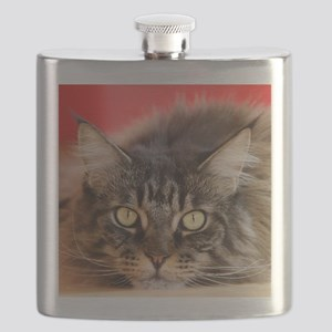 Maine Coon Flask