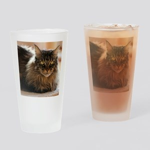 Maine Coon Drinking Glass