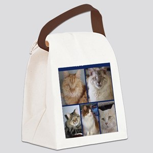 Fluffy Gang of BCR Canvas Lunch Bag