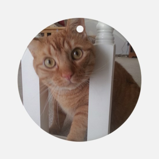 Banister Kitty Round Ornament