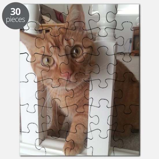 Banister Kitty Puzzle