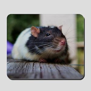 Huck Mousepad