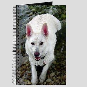 white shepherds Journal