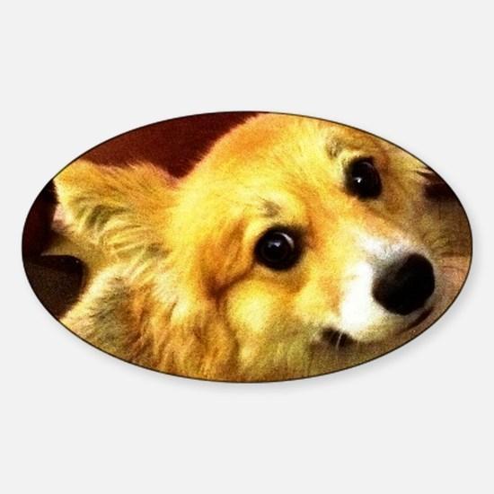 I Support Rescue Sticker (Oval)