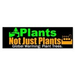 Plant Trees:They assist in removing Carbon Dioxide