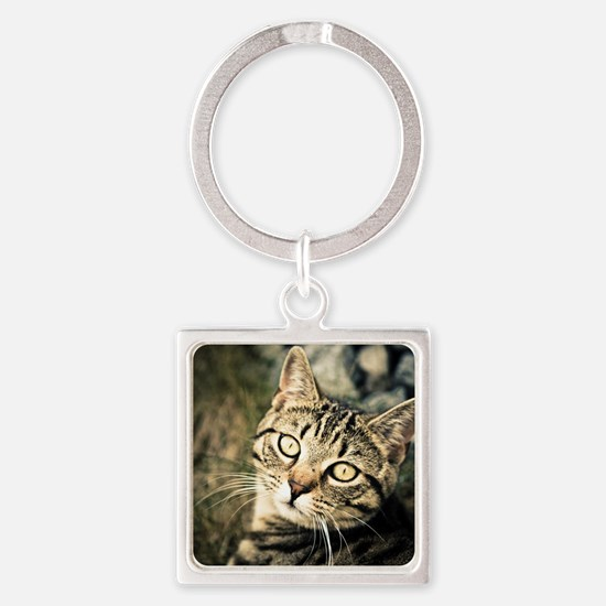 Domestic Cat Square Keychain