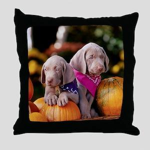 Weimaraner Puppies and Pumpkins Throw Pillow