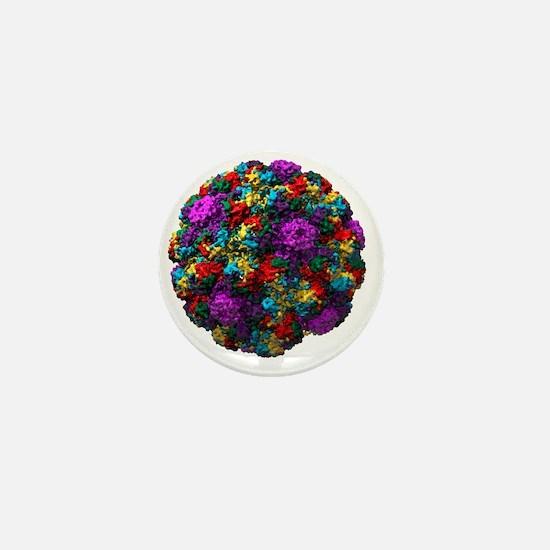 Simian virus 40 particle, molecular mo Mini Button