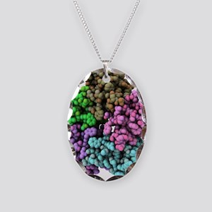 Shiga-like toxin I subunit mol Necklace Oval Charm