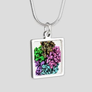 Shiga-like toxin I subunit Silver Square Necklace